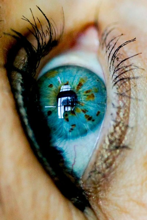 Amazing eyes. Amazing color. Oh so gorgeous. /gracey