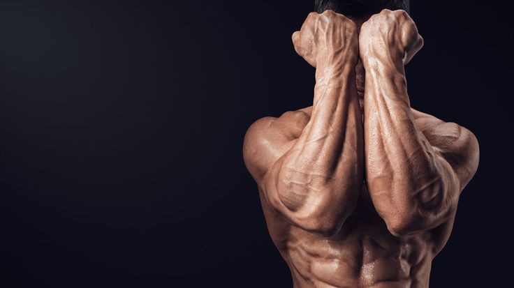 If you want to know the best forearm workout for increasing muscle mass and grip strength, then you want to read this article.