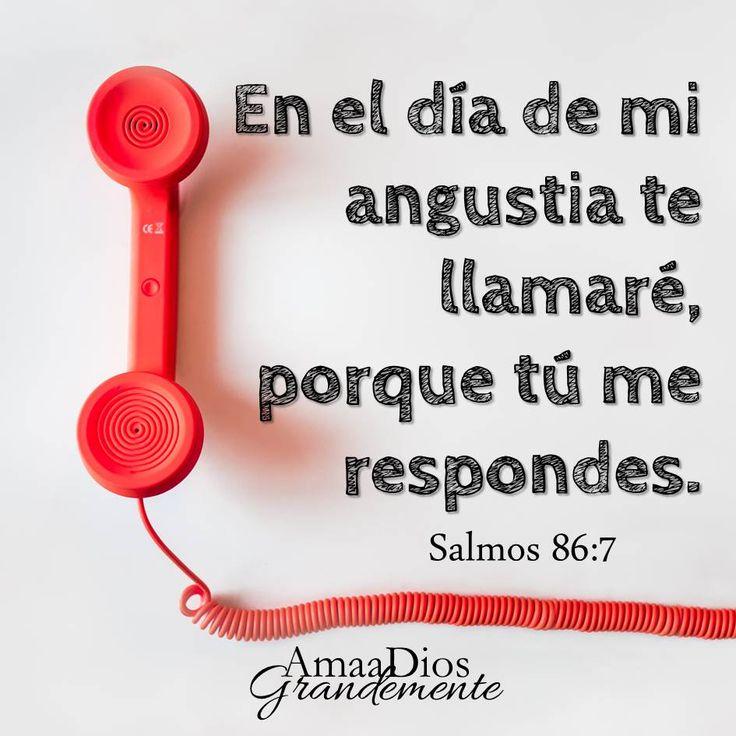 Salmo 86:5-8 Porque tú, Señor, eres bueno y perdonador, y grande en misericordia para con todos los que te invocan. Escucha, oh Jehová, mi oración, Y está atento a la voz de mis ruegos. En el día de mi angustia te llamaré, porque tú me respondes. Oh Señor, ninguno hay como tú entre los dioses, Ni obras que igualen tus obras.♔