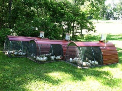 chicken tractors- Green Secrets                                                                                                                                                                                 More