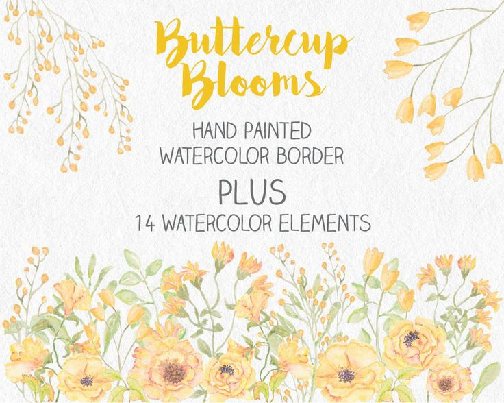 Watercolor border of hand painted buttercup blooms; watercolor clip art; wedding clip art; weddings; instant download by LollysLaneShoppe on Etsy