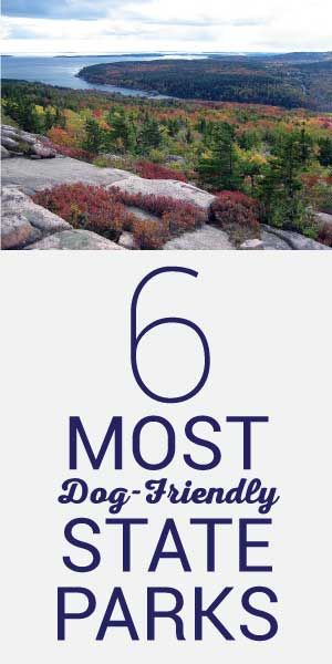 6 Most Dog Friendly State Parks