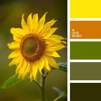 ámbar, anaranjado, color girasol, color ocre, color verde oscuro, colores para la decoración, elección del color, paletas de colores para decoración, paletas para un diseñador, selección de colores, verde manzana, verde militar, verde oscuro.