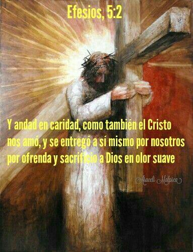 Efesios, 5:2 - y andad en caridad, como también el Cristo nos amó, y se entregó a sí mismo por nosotros por ofrenda y sacrificio a Dios en olor suave.