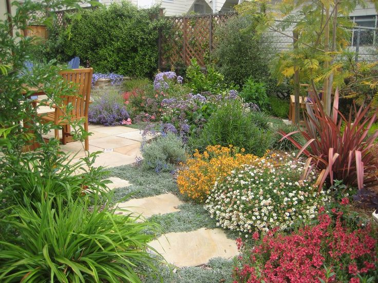 Image result for drought tolerant gardens los angeles