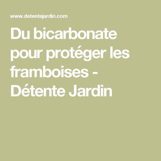 Du bicarbonate pour protéger les framboises - Détente Jardin