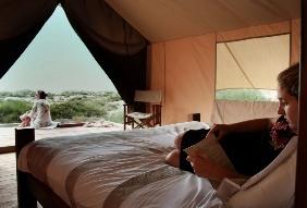 Tent windows