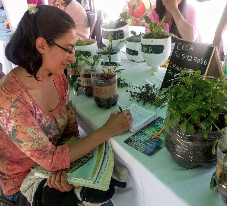 Invitan a taller gratuito sobre huertos orgánicos