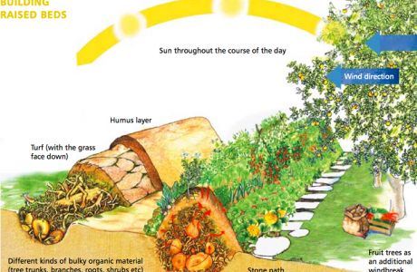 Hugelkultur are no-dig raised beds with a difference. They hold moisture, build fertility, maximise surface volume and are great spaces for growing fruit, vegetables and herbs.