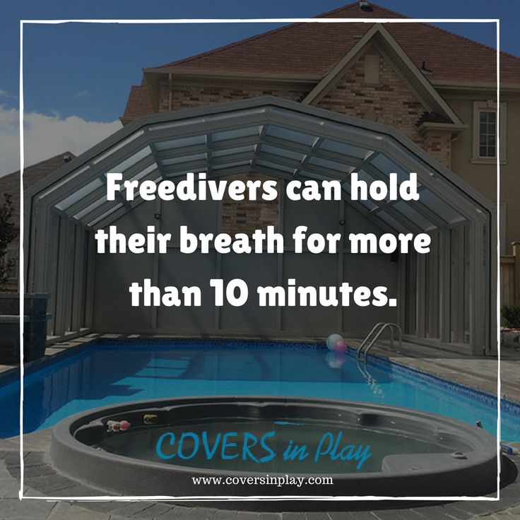 How long can you hold your breath? If you are like most people, you start to feel panicked at about 30 seconds. But Freedivers take the cake. http://www.coversinplay.com#Quotes #PoolCover #Cover #PoolEnclosure #PatioEnclosures #PoolDesigns #EndlessPool #SwimmingFacts #FreeDivers