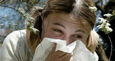Wat je móet weten over hooikoorts. #hooikoorts #tips #weetjes #gezondheid #budgi www.budgi.nl