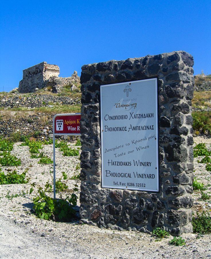 Hatzidakis #Winery #Santorini #Vineyard #Wine
