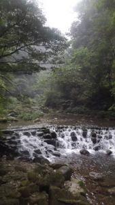 Avatar Mountains, China