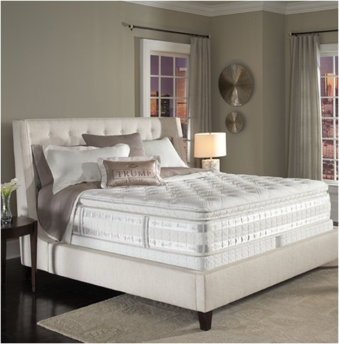 The Trump Home Iseries By Serta Sertamomsweeps Mom Knows Comfort Best Pinterest Buy