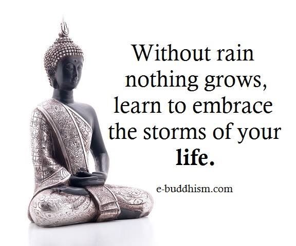 without rain nothing grows.💦🌱