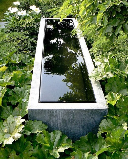 reflecting pool - would look pretty with a tiny fountain, just a little lift right in the middle and river rock at the bottom for interest.