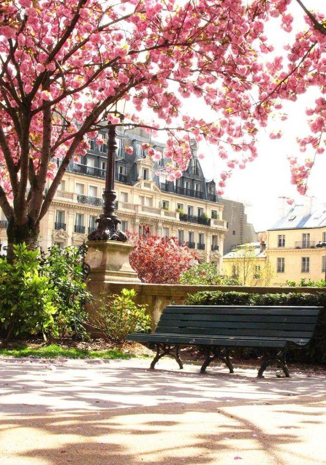 Весенний Париж очарователен. - Путешествуем вместе