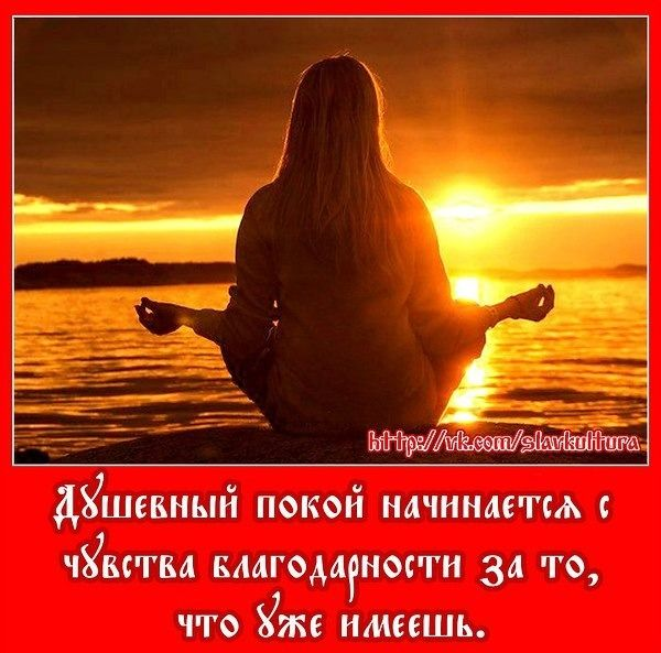2364604548.jpg — Яндекс.Диск