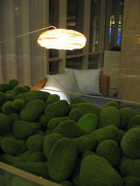 mossHouse Plants, Eco Design, Gardens Inspiration, Aqua Scapes, Moss Gardens, Geometric Moss, Cities Living, Briar Rose, Green Living