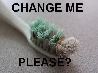 Change me please, every 3 months and after every cold.