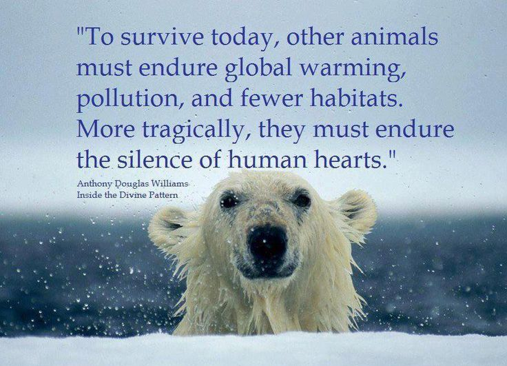 """""""to Survive Today, Other Animals Must Endure Global"""