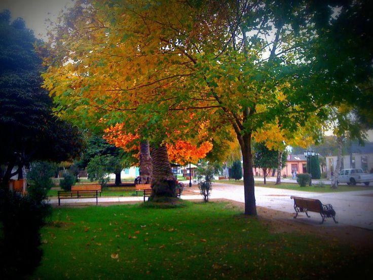 Plaza en otoño...