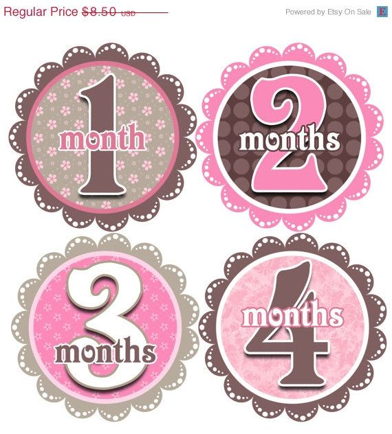ON SALE Monthly Baby Stickers Baby Girl by BellyToBabyDesigns, $7.65