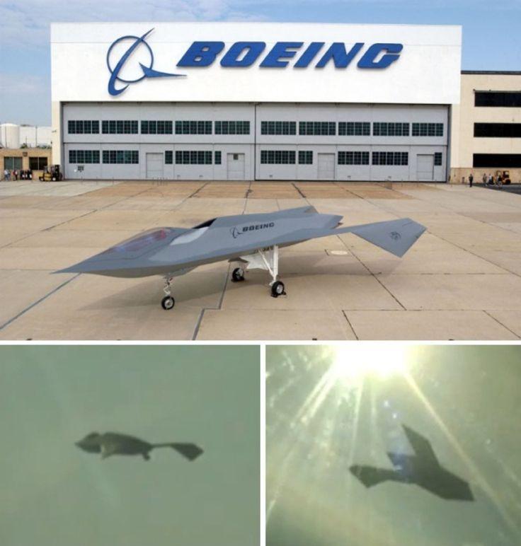 9 best F-118G Bird of Prey (Boeing) images on Pinterest Birds of - boeing aerospace engineer sample resume