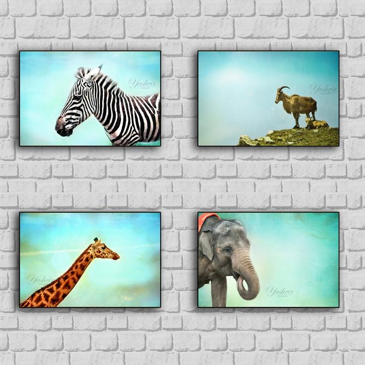 Friendly Faces- Safari art print set. Photography print of Animals. Blue teal background. Kids room, nursery decor.. $32.00, via Etsy.