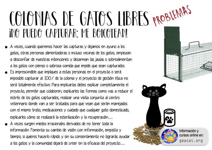 Problema 21: Boicot  #CES  #GestiónÉtica  Curso: https://goo.gl/YXAFJC  Pdf: