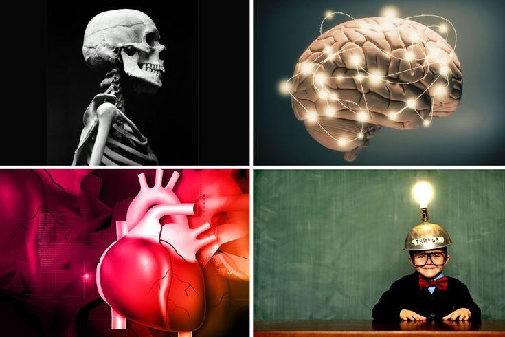Uskomaton ihmiskeho - lue 15 faktaa!