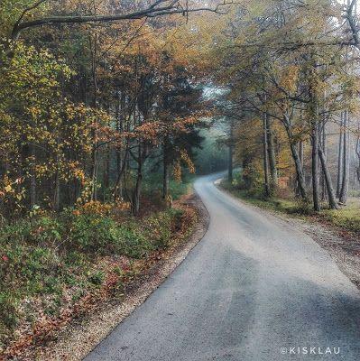 Pölcz Klaudia - kisklau: Vasárnap reggel (október 23.)