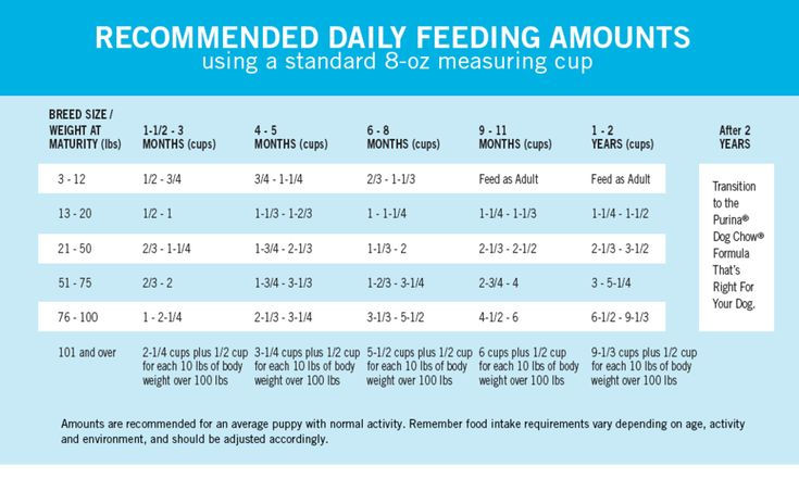 How much should i feed my puppy a complete puppy feeding