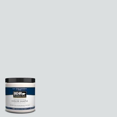 BEHR Premium Plus 8 oz. #720E-1 Reflecting Pool Interior/Exterior Paint Sample-720E-1PP at The Home Depot