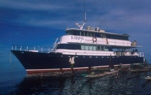 MV Febrina is a liveaboard in PNG with many different itineraries covering the north to south coasts of New Britain.