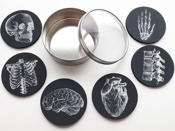 Anatomy Coaster future physician male nurse medical pupil doctor assistant reward stocking stuffer black white goth dwelling decor gothic college 828c6d0e2cae407b8097673f923f8213  medical students nurses