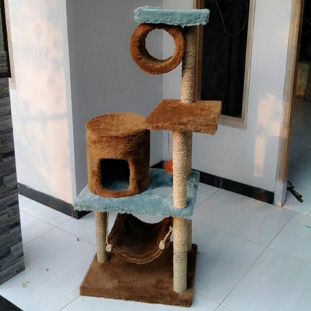 Cat Scratching/cat Condo/garukan Kucing, Pets Supplies on Carousell
