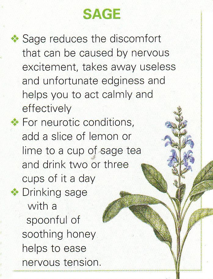 Sage Its Also Great For Sore Throats In 2020 Herbalism Healing Herbs Herbal Healing