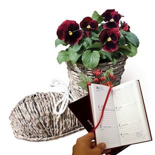 Gift Boot Planter with Red Pansies and Letts Diary Really bootiful Walking Boot Planter and 2017 Letts pocket diaryMaterials: metal and rattan.Height: 20cm (8) All orders must be received by Sunday 18th December for Christmas Delivery.For a planter le http://www.MightGet.com/january-2017-11/gift-boot-planter-with-red-pansies-and-letts-diary.asp