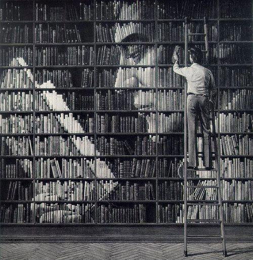Amazing book portrait on a wall of bookshelves