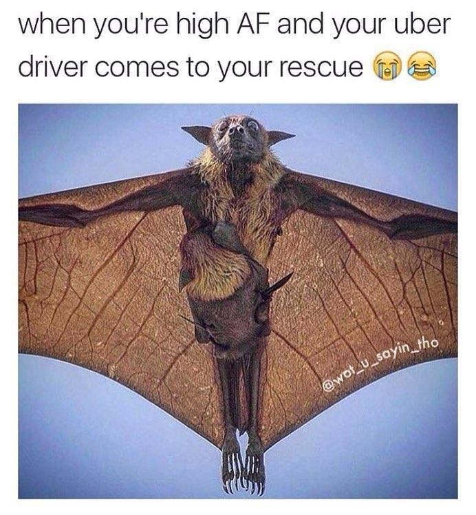 uber uk southampton