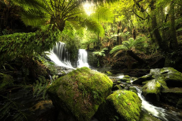 Photography Helped Me Defeat Depression And See The World In A New Light | Bored Panda    - Tasmania -
