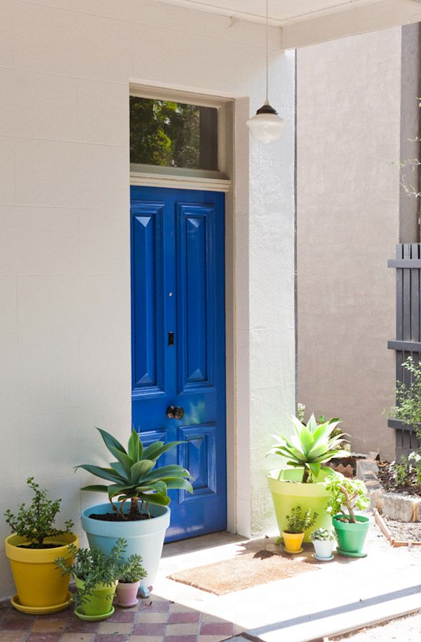Succulent Blue Door Entrance