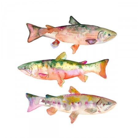 Like this watercolor form Sarah B. Martinez... may want to incorporate some trout into our nursery someday :)
