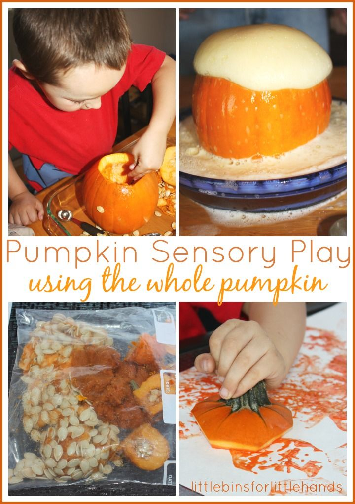 whole pumpkin sensory play early learning fall activities