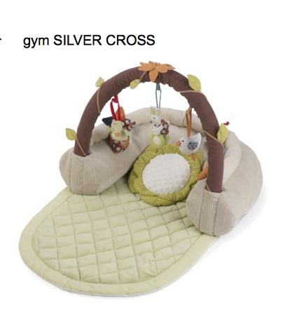 Silver Cross Gym