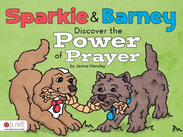 As a grandmother and the author of this book, I can tell you that kids 4-12 love it!!! Many valuable lessons to be learned such as compassion, benevolence, and learning the importance of prayer. You may preview the book and order at www.janicehensley.net: Books Worth, Kids 4 12, Kids 3 12