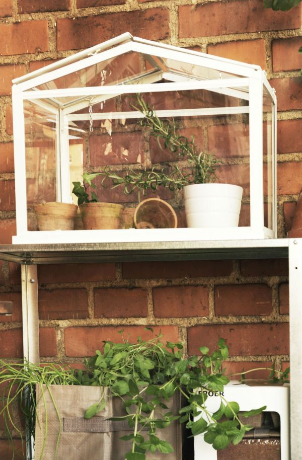 the socker greenhouse provides the perfect growing environment and features roof vents to regulate circulation and - Garden Ideas Ikea