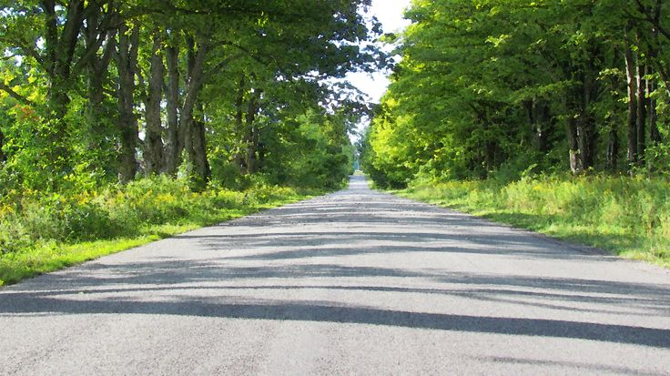 Mid Summer Country Road