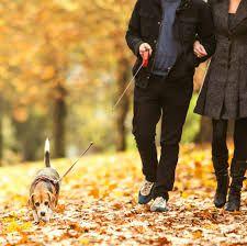 5 Ways Walking is Better than Running